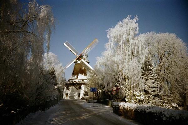 Windmühle Johanna im Winter